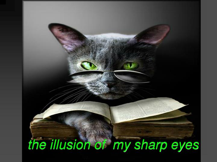the illusion of  my sharp eyes