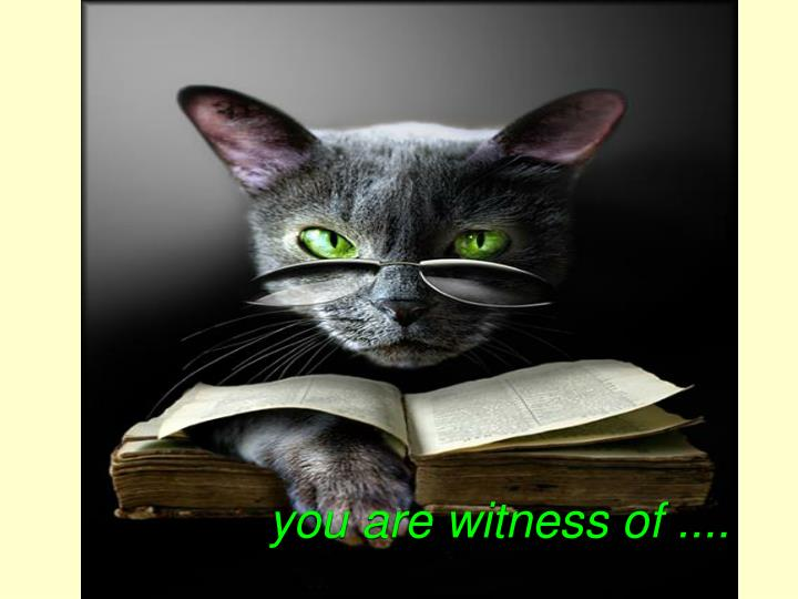 you are witness of