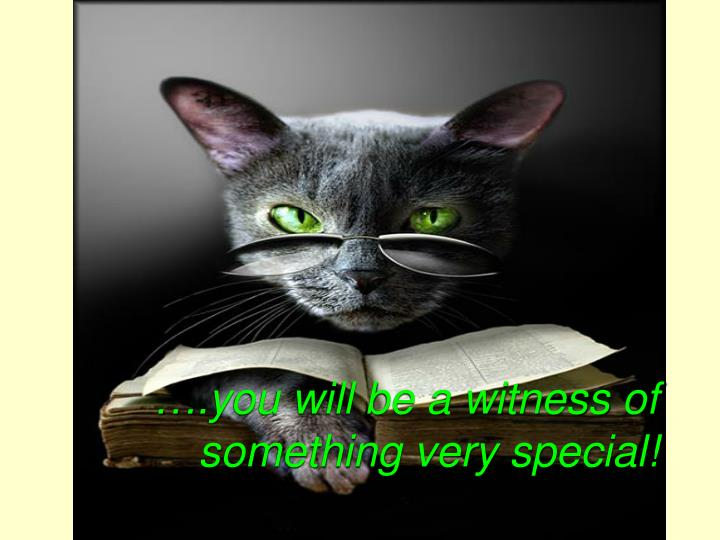 ….you will be a witness of something very special!