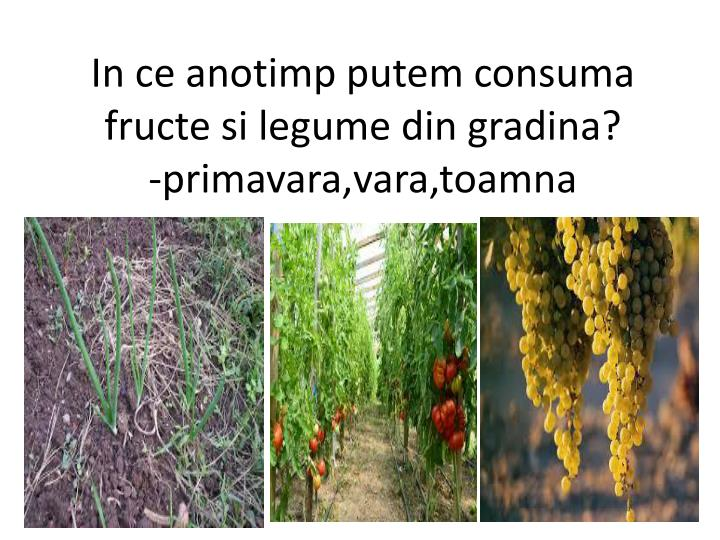 In ce anotimp putem consuma  fructe si legume din gradina?