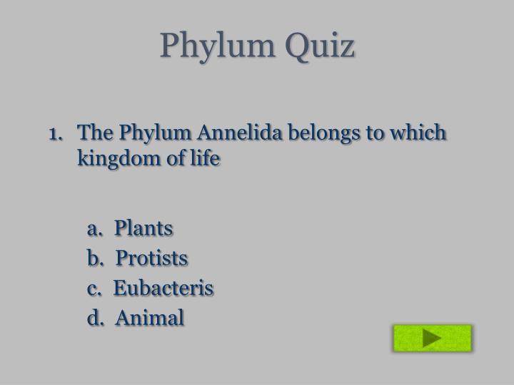 Phylum Quiz