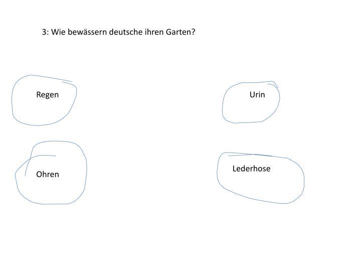 3: Wie bewässern deutsche ihren Garten?