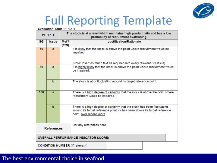 Full Reporting Template