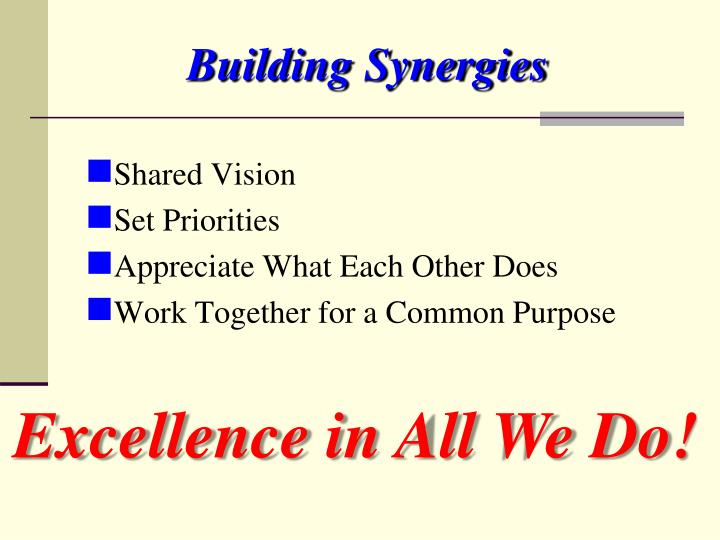 Building Synergies