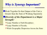 why is synergy important