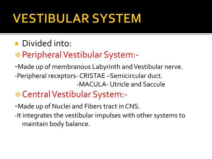 VESTIBULAR SYSTEM