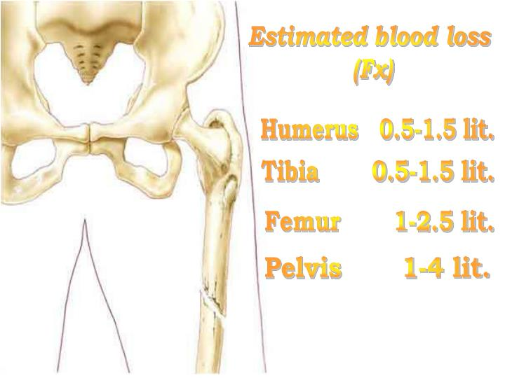 Estimated blood loss