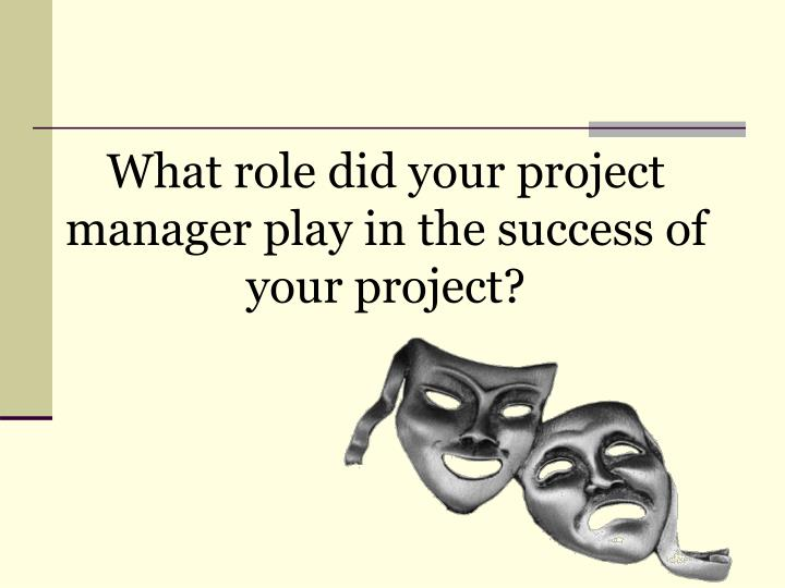 What role did your project manager play in the success of your project?