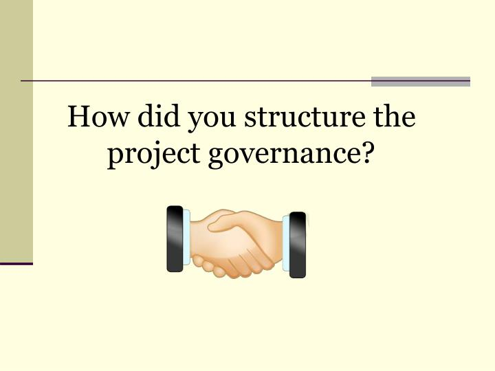 How did you structure the project governance?