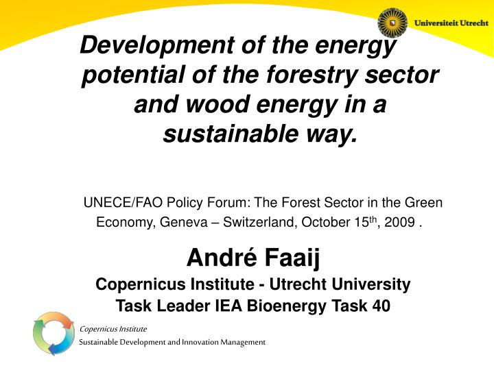 Development of the energy potential of the forestry sector  and wood energy in a sustainable way.