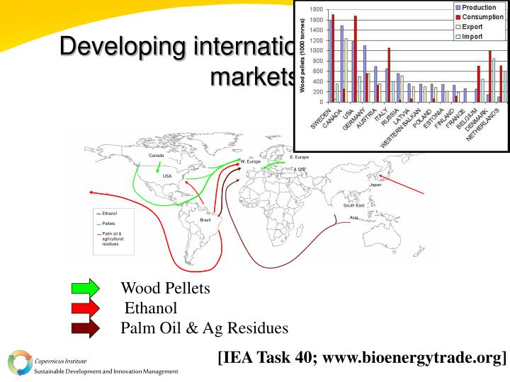 Developing international bioenergy markets