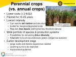 perennial crops vs annual crops