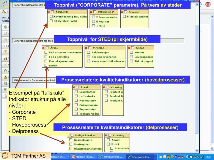 "Toppnivå (""CORPORATE"" parametre)."