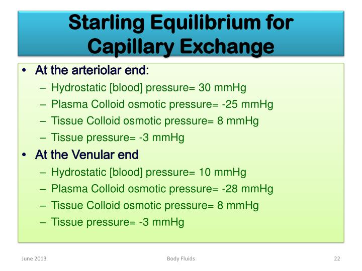Starling Equilibrium for