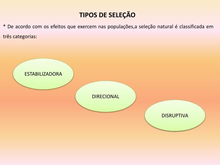 TIPOS DE SELEÇÃO