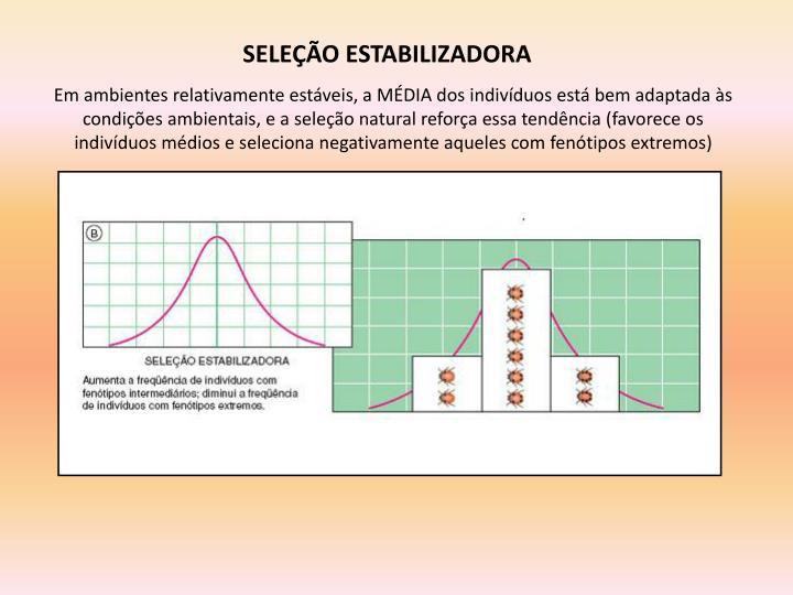SELEÇÃO ESTABILIZADORA