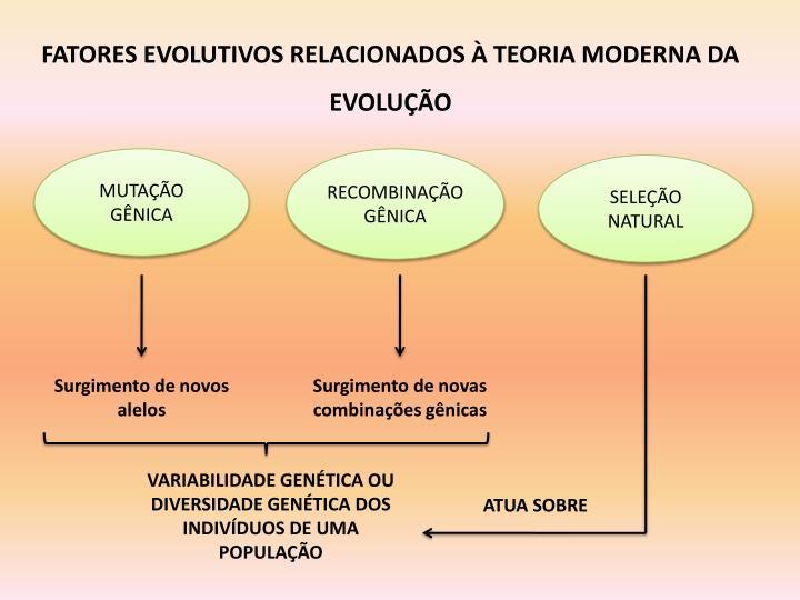 FATORES EVOLUTIVOS RELACIONADOS À TEORIA MODERNA DA EVOLUÇÃO