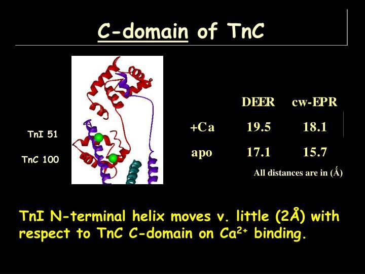 C-domain