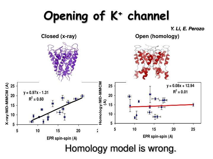 Opening of K