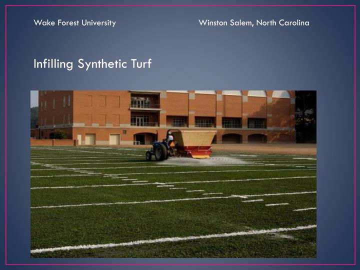 Wake Forest University                                 Winston Salem, North Carolina