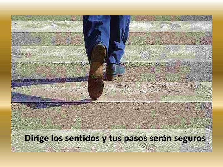 Dirige los sentidos y tus pasos serán seguros