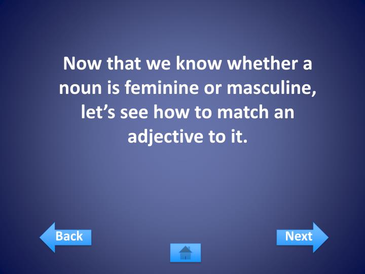 Now that we know whether a noun is feminine or masculine, let's see how to match an adjective to it.