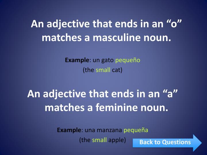"An adjective that ends in an ""o"" matches a masculine noun."
