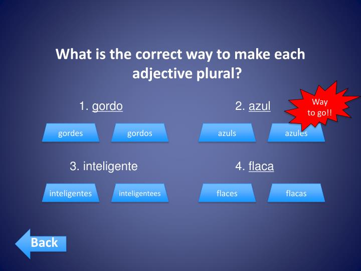 What is the correct way to make each adjective plural?