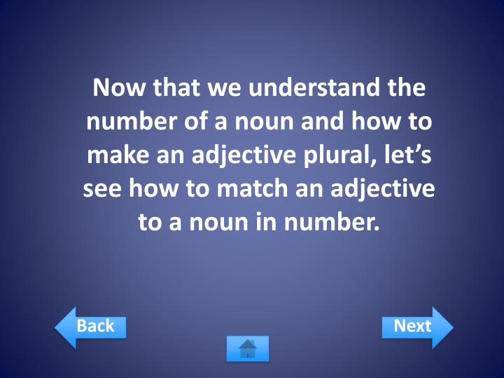 Now that we understand the number of a noun and how to make an adjective plural, let's see how to match an adjective to a noun in number.