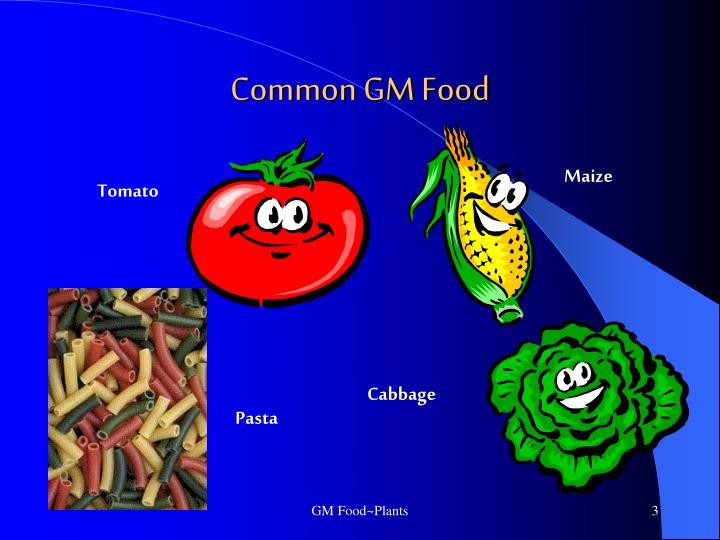 Common GM Food