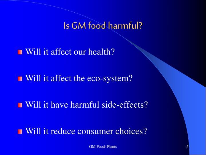 Is GM food harmful?