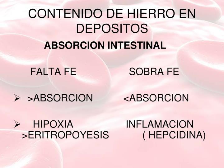 CONTENIDO DE HIERRO EN DEPOSITOS