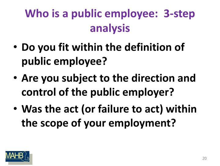 Who is a public employee:  3-step analysis