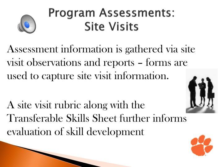 Program Assessments: