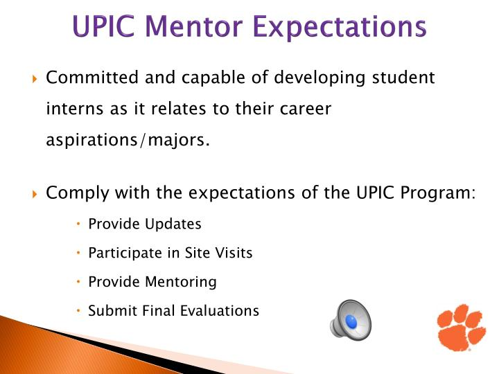 UPIC Mentor Expectations
