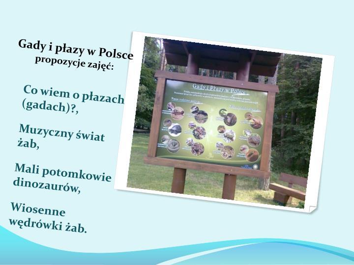 Gady i płazy w Polsce