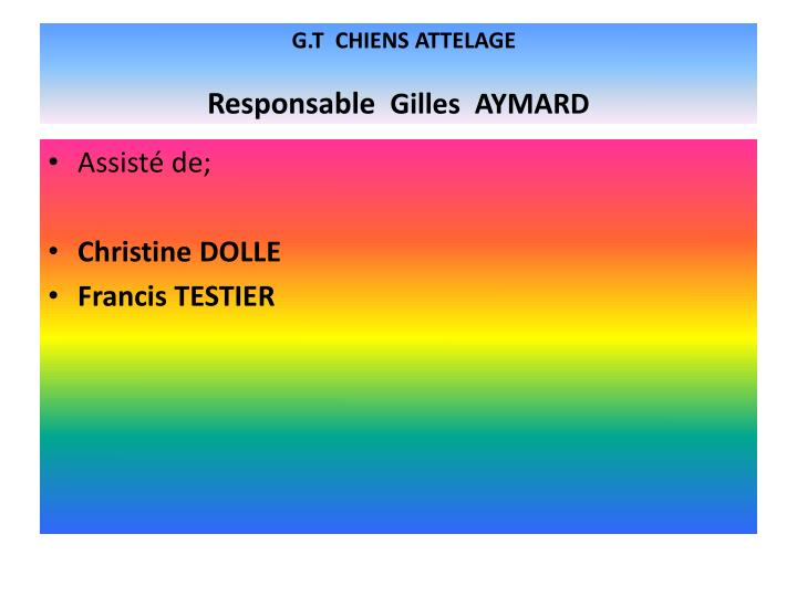 G.T  CHIENS ATTELAGE