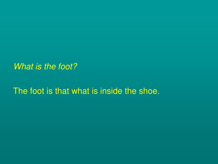 What is the foot?