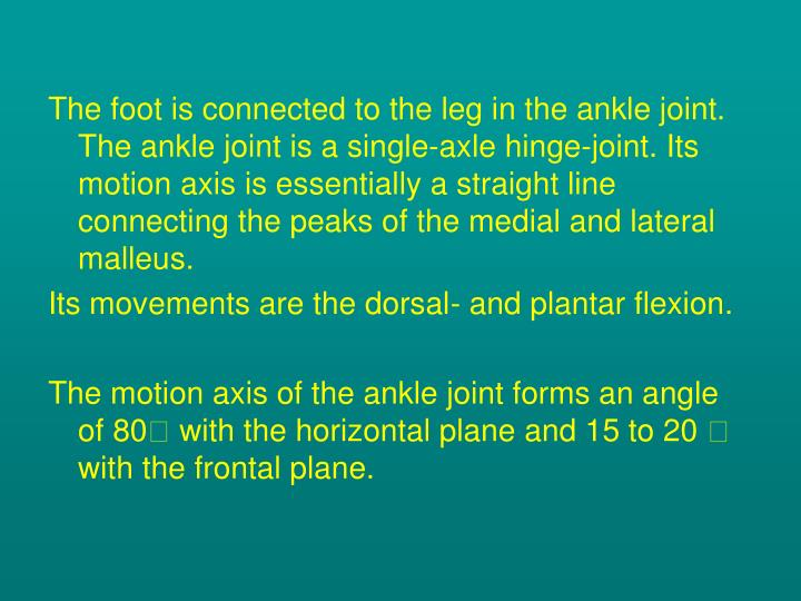 The foot is connected to the leg in the ankle joint. The ankle joint is a single-axle hinge-joint. Its motion axis is essentially a straight line connecting the peaks of the medial and lateral malleus.