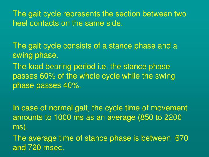 The gait cycle represents the section between two heel contacts on the same side