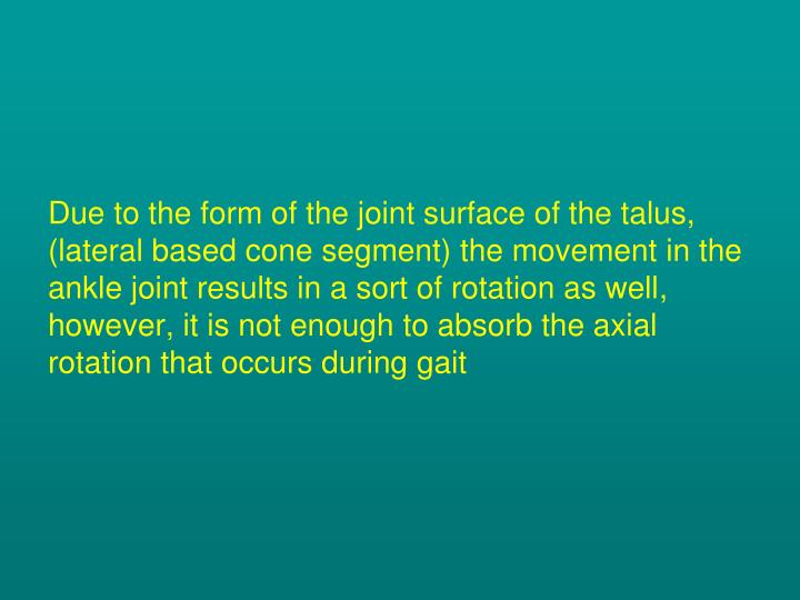 Due to the form of the joint surface of the talus, (lateral based cone segment) the movement in the ankle joint results in a sort of rotation as well