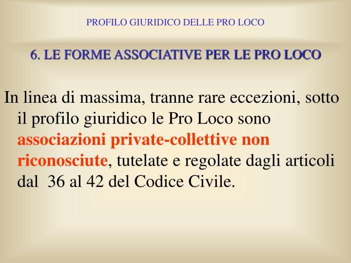 6. LE FORME ASSOCIATIVE PER LE PRO LOCO