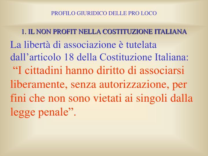 1. IL NON PROFIT NELLA COSTITUZIONE ITALIANA