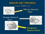 brain networks www cast org