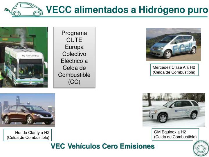 VECC alimentados a Hidrógeno puro