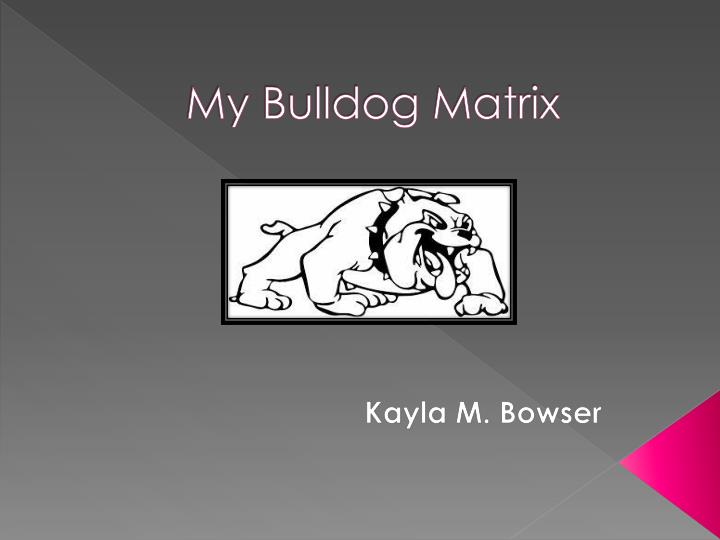 My bulldog matrix