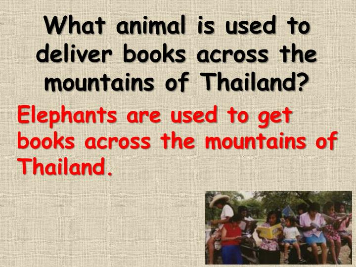 What animal is used to deliver books across the mountains of Thailand?