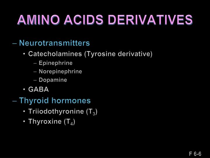 AMINO ACIDS DERIVATIVES