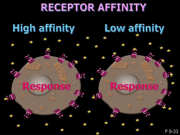 RECEPTOR AFFINITY