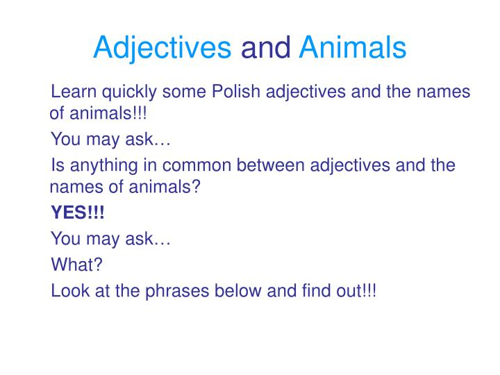 Adjectives and animals